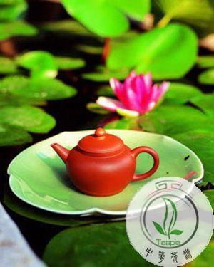 压力造成便秘要喝荷叶茶